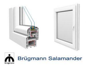 SALAMANDER BRUGMANN AD73